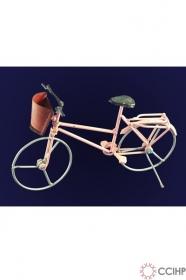 Xe đạp nhỏ