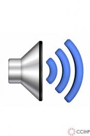 Audio phỏng vấn một người đồng tính nam (2010)