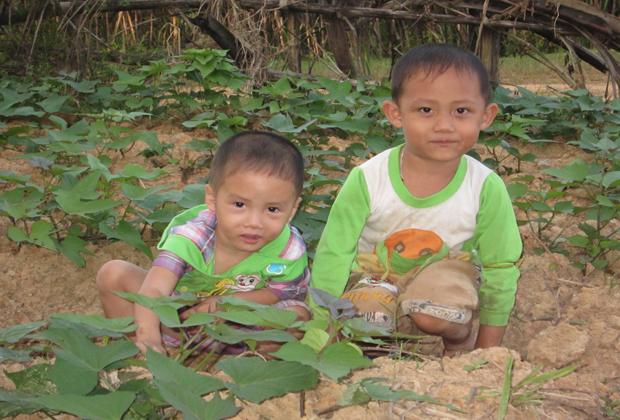 Trẻ con nông thôn chơi trong vườn nhà